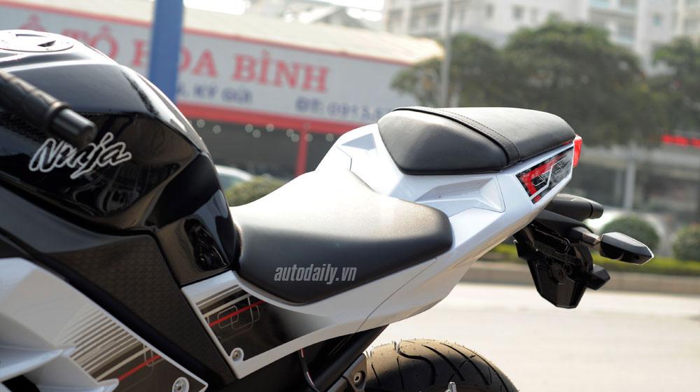 Kawasaki Ninja 300 ABS (31).jpg